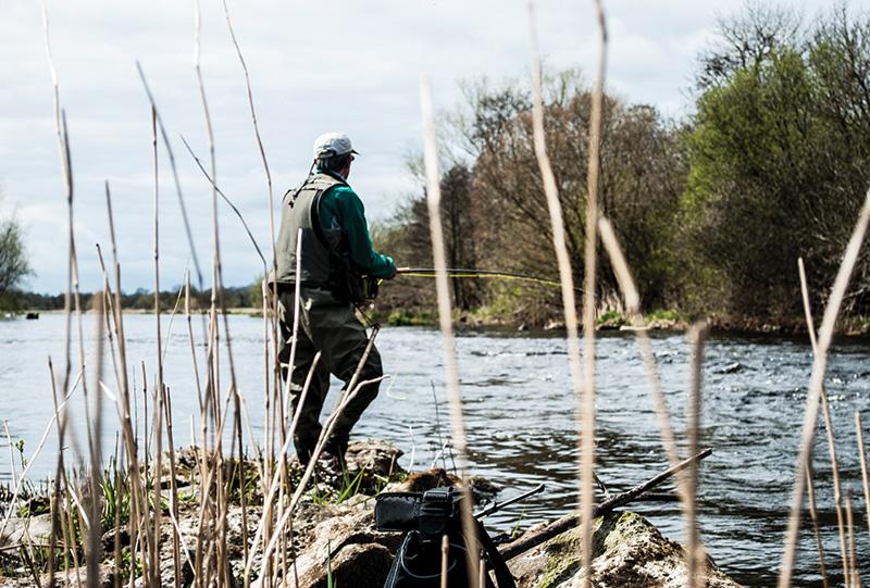Fishing Reeds