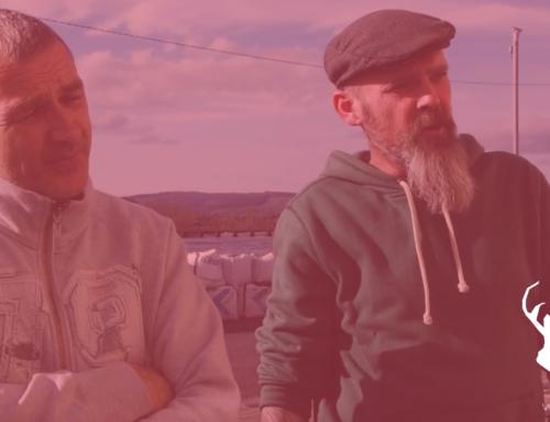 Island Life – Irish Rivers in Limerick